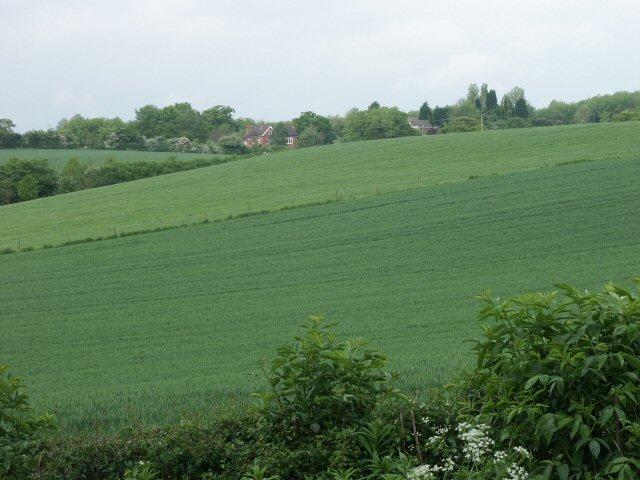 Fields & Shortwood Farm