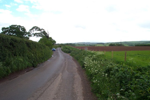 Stogursey Lane, near Durborough Farm