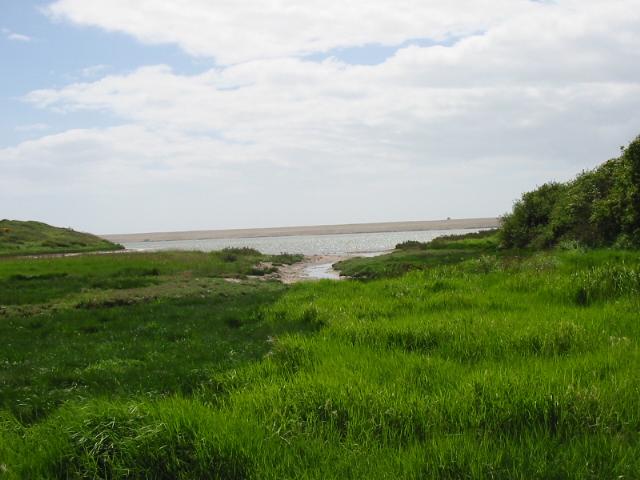 Tidmoor Cove on The Fleet