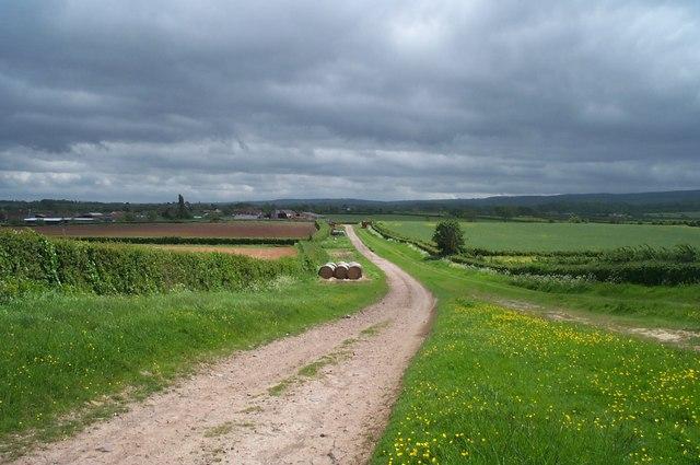 Track near Knighton
