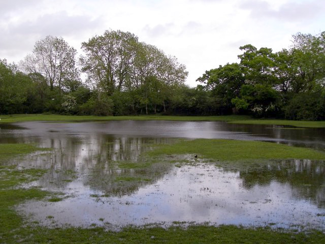 Flooded lawn south of the Lymington River, Brockenhurst, New Forest