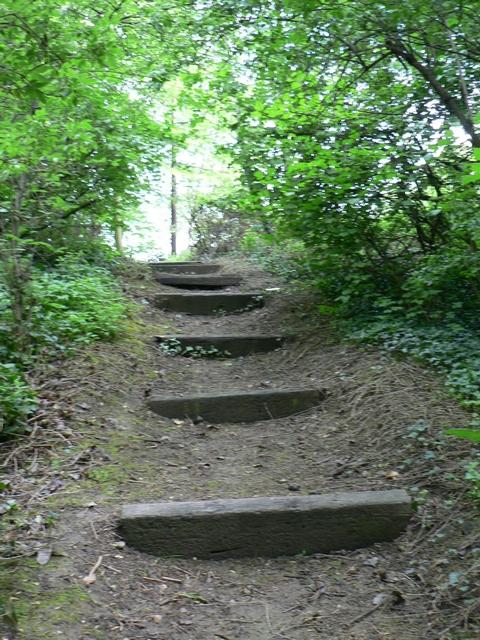 Footpath to St Ann's Mills, Kirkstall, Leeds