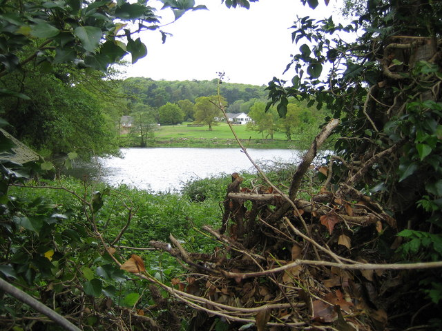 Ulverscroft Pond