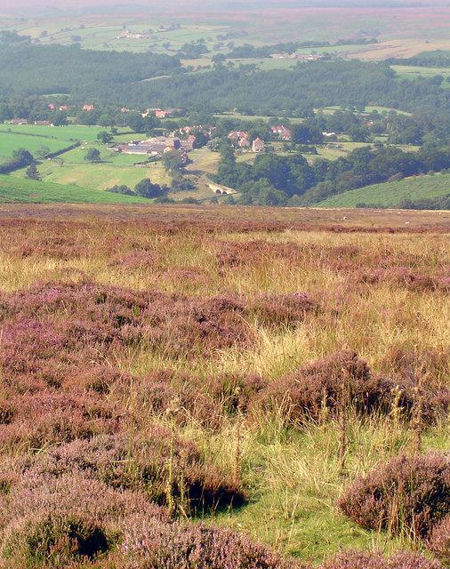 Moorland Views