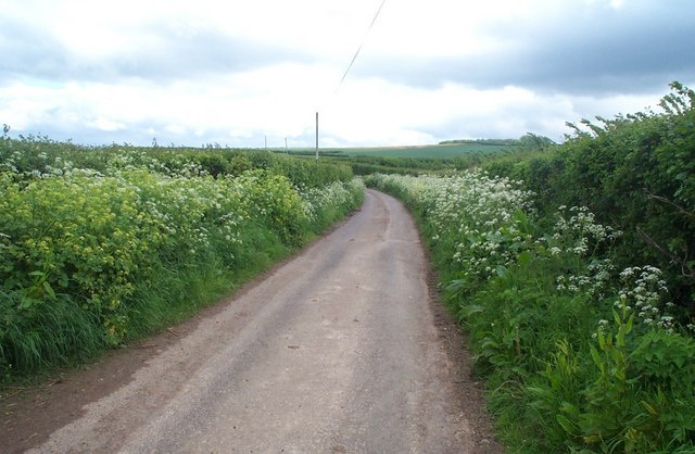 Lane from Kilton to Burton