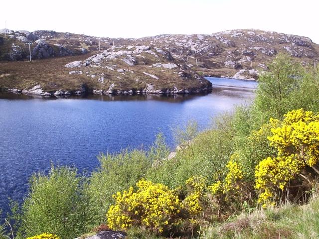 Loch na Fiacail