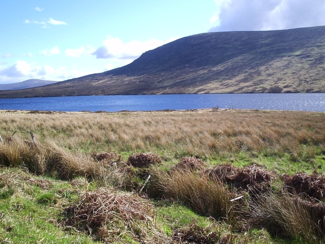 Looking towards Loch Merkland