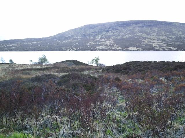 Looking towards Loch a Ghriama