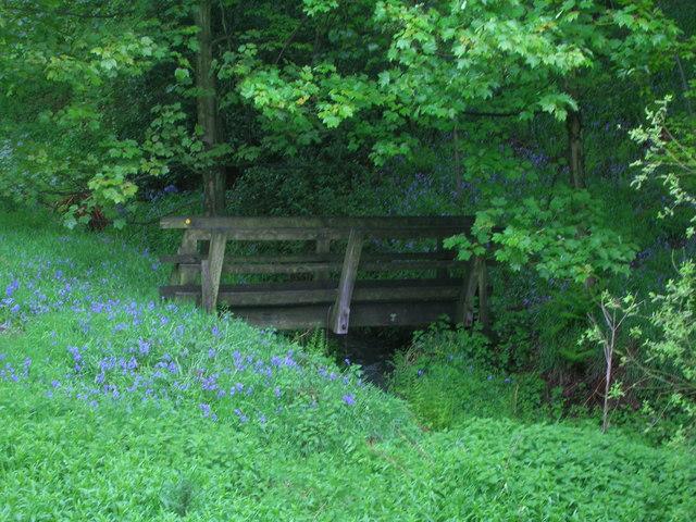 Footbridge in Hagg Wood