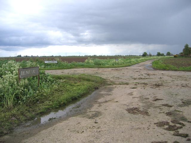 Fenland crossroads, Surfleet, Lincs