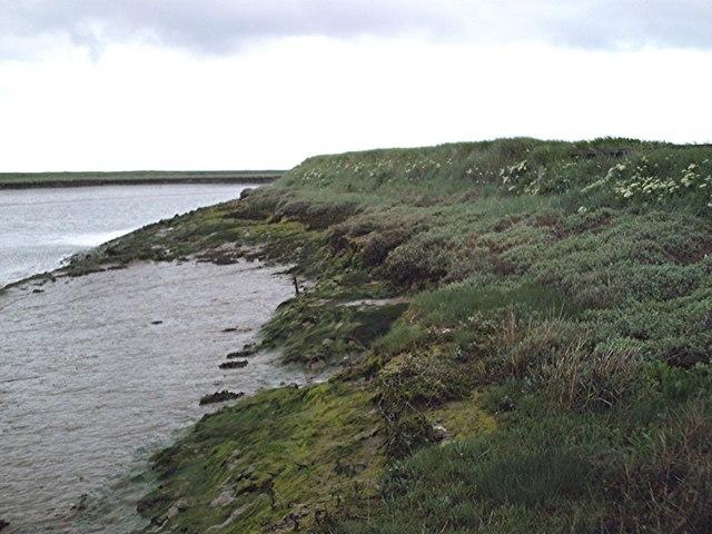 Seawall - Clements Marsh Sluice