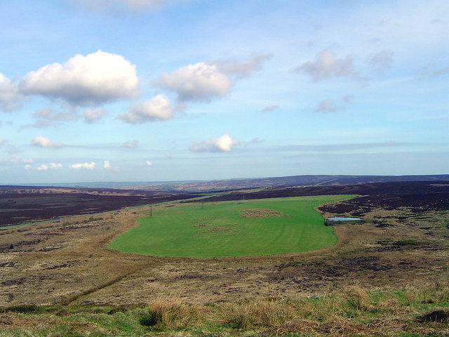 Saltergate Moor