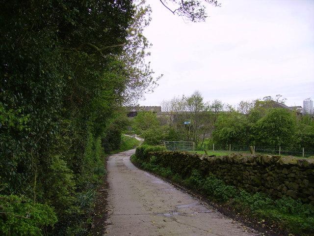 Track to Low Birks Farm