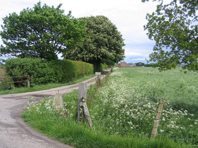 Hill's Farm, Gosberton Marsh, Lincs