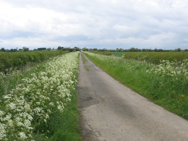 Little Drove, Kirton Middle Fen, Lincs