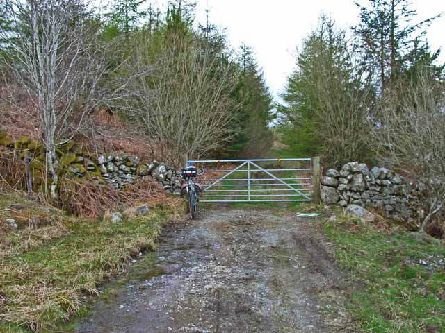 Gateway to Penninghame Forest