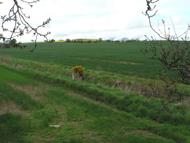Towards Dunbarrow Hill