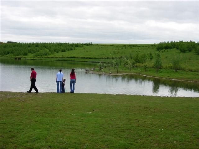 Pond in Herrington Country Park