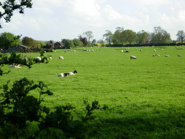 Farmland north west of Husbands Bosworth
