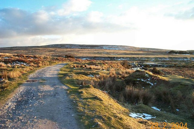 Track from Cadover Bridge - Dartmoor