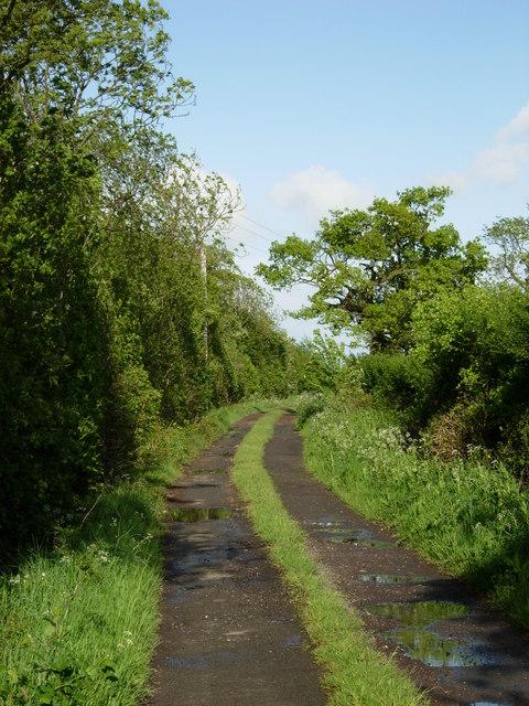 Col's Lane