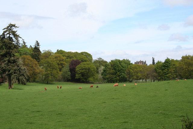 Glamis Castle estate