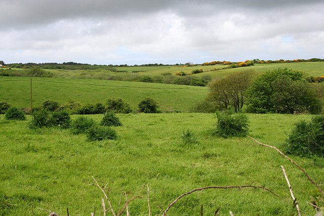 Rolling Pastures