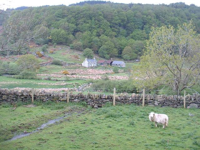 Pwll-y-gâth farm