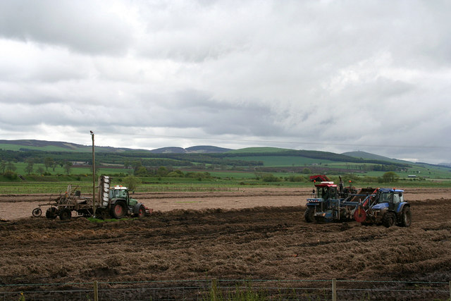 Agricultural 'activity' at Kinalty Haughs