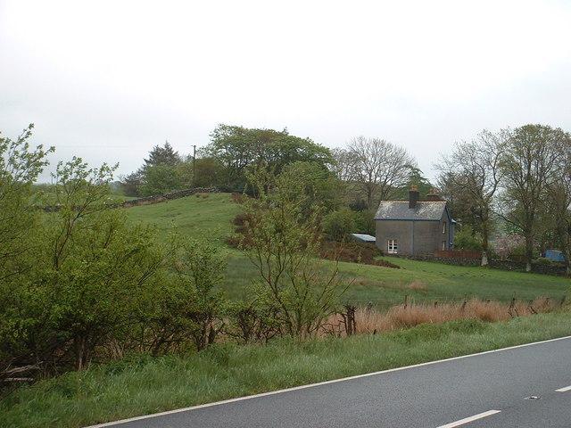 Bron-y-graig house