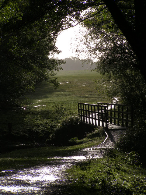 Fawley Ford and footbridge, Beaulieu River, New Forest