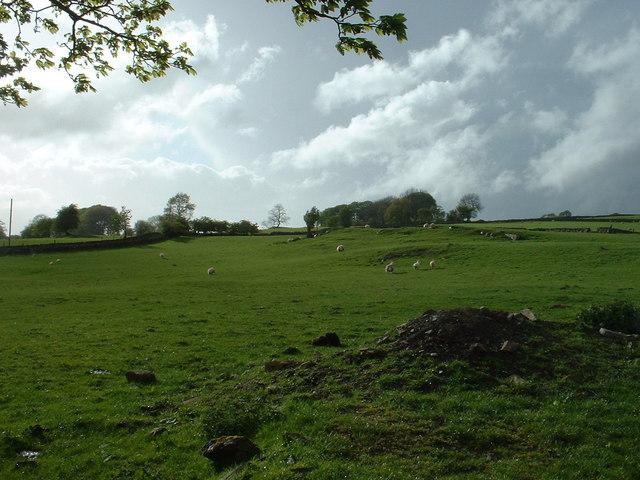 Farmland near Pentrefoelas