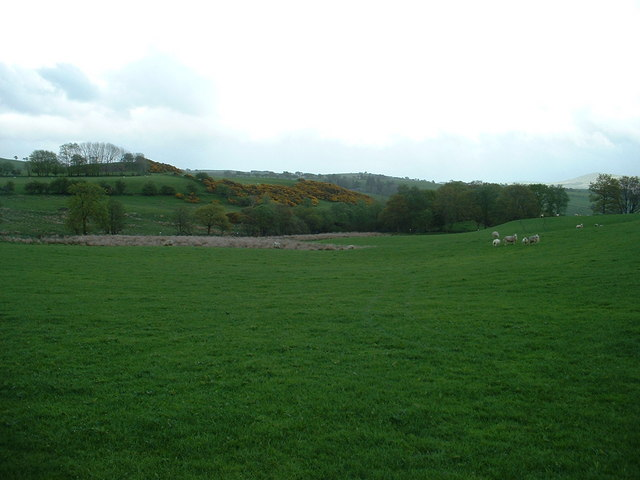 Farmland near Capel Garmon