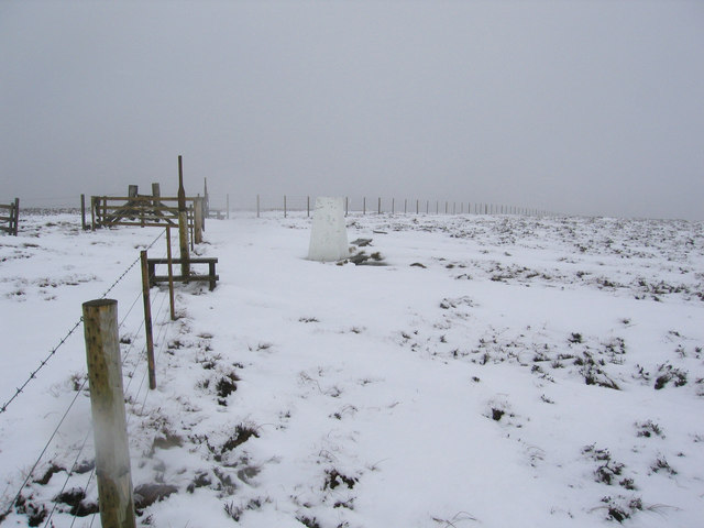 Summit of Bloodybush Edge 610m asl