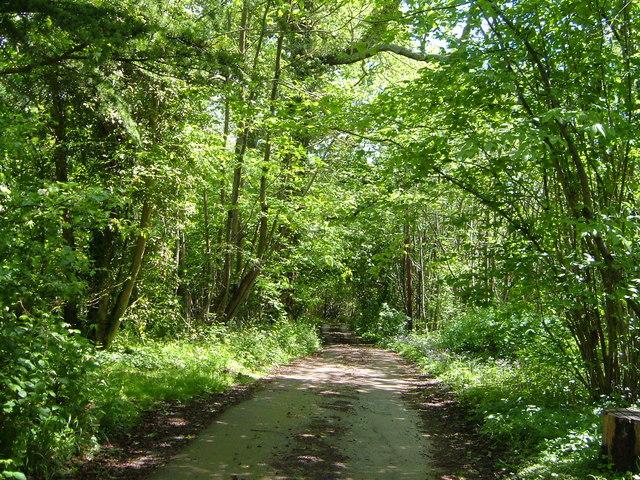 Driveway to Kentlands