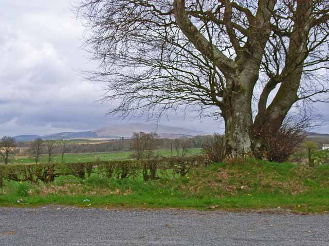 View of the Cairnsmore of Fleet from the layby on the A714