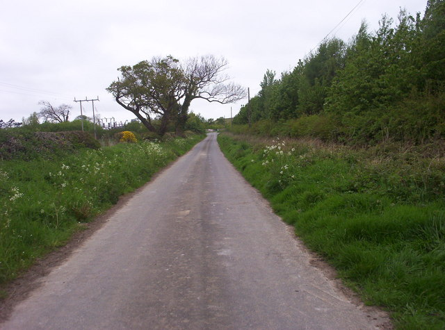 The Road to Ulgham Park