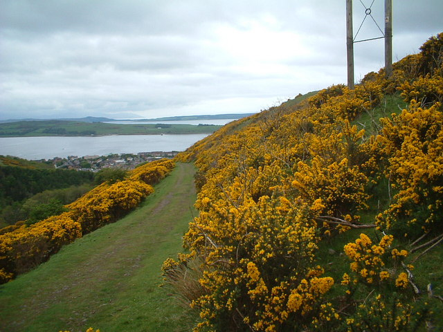 The track from Largs to Greeto Bridge