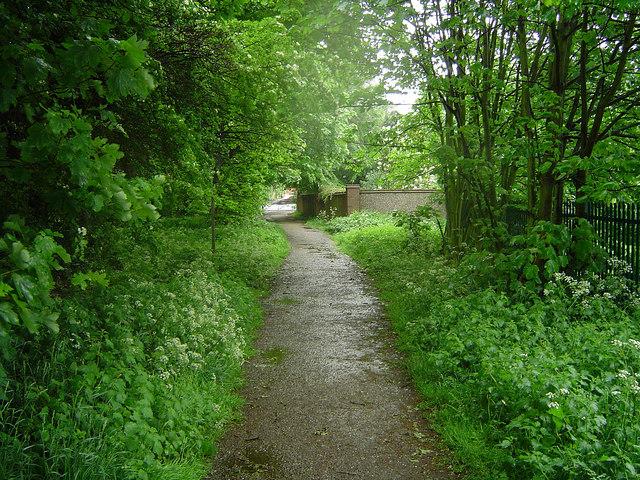 Bridleway in Edenthorpe