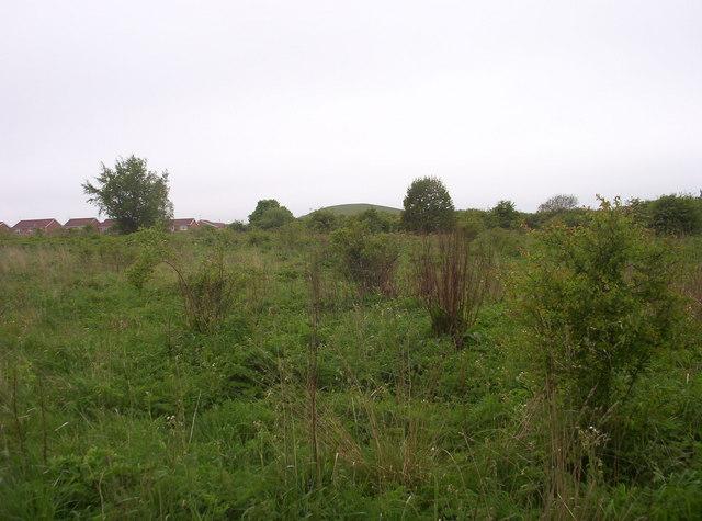Open Land at Parkside