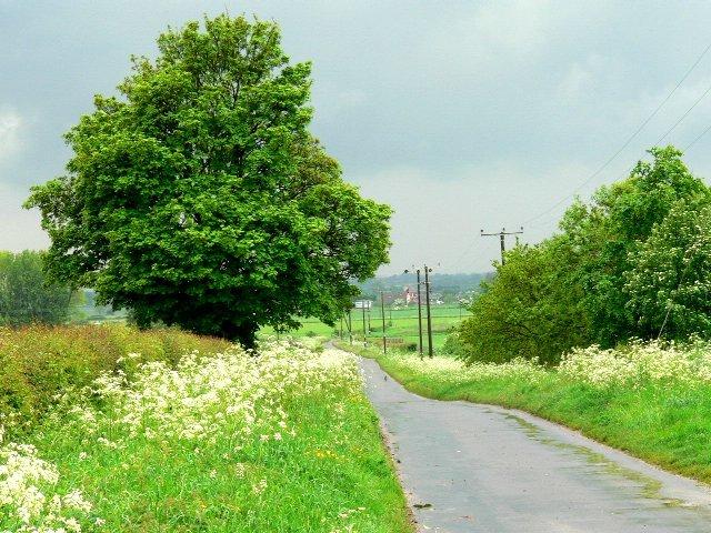 Mires Lane