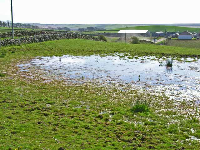 Flooded field at Glenhowl, near Glenluce