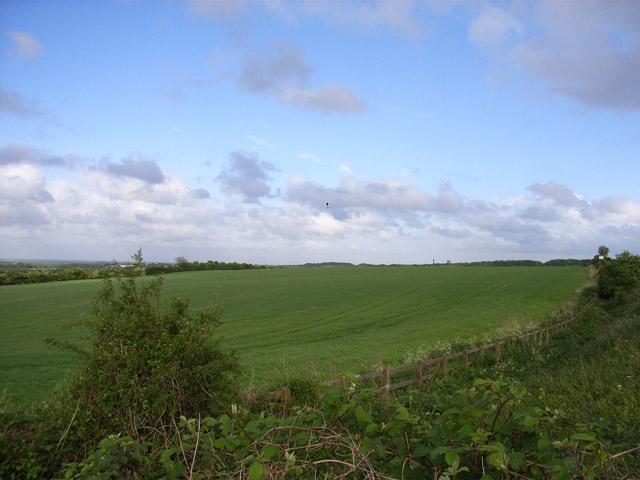 Northwest of Basingstoke