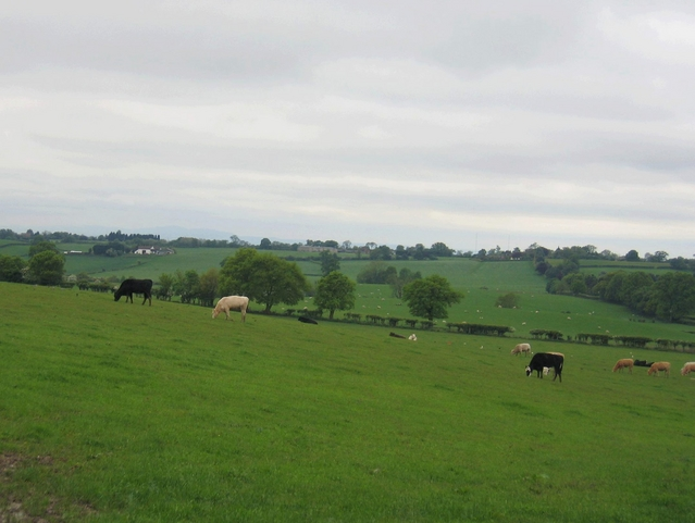 View from Wheeley Farm