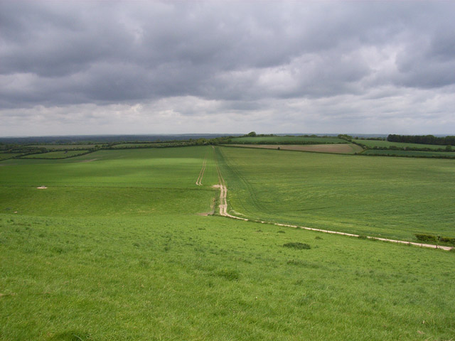 Downs above Kingsclere