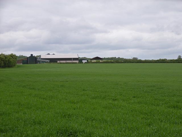 Willesley Warren Farm