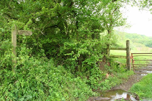 Wellington: footpath to Beacon Lane Farm