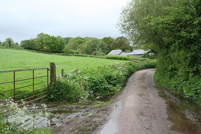 Clayhidon: nearing Lillycombe Farm