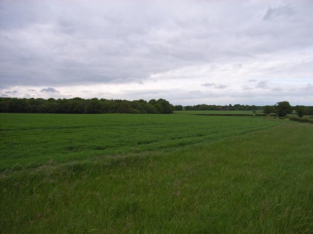 Farmland above Ramsdell