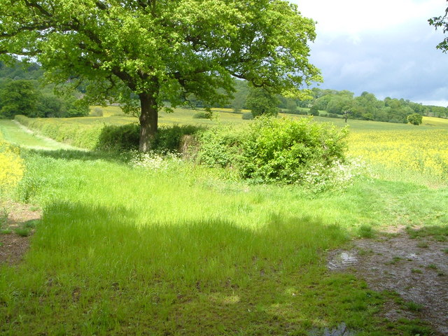 Towards the Greensand Ridge from near Budd's Green